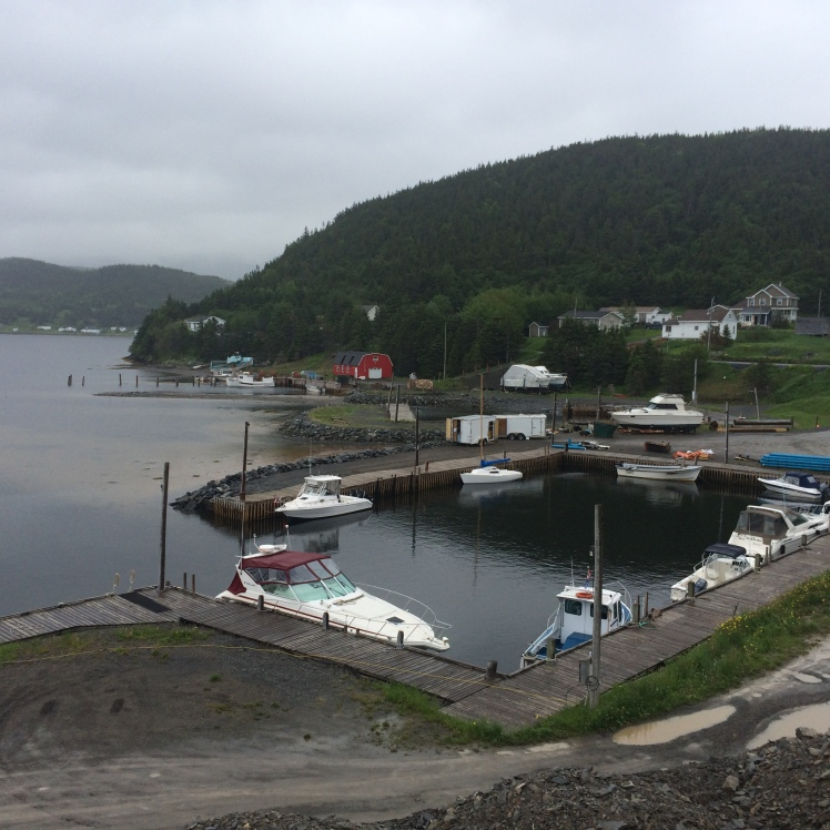 Norris Point 2
