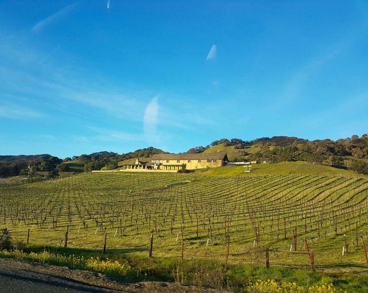b Winery