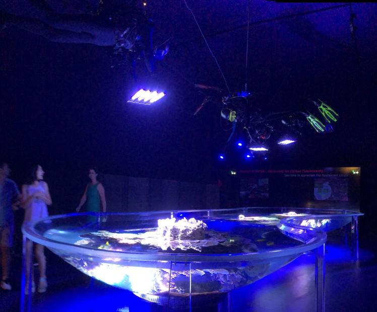 Aquarium et musée océanographique Manaco